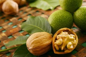 The Kazakh farmers have started to grow walnuts