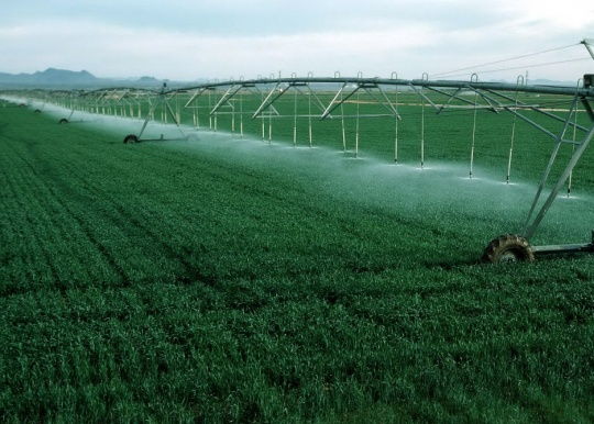 The agricultural industry in Kazakhstan will be reoriented: Irrigated lands