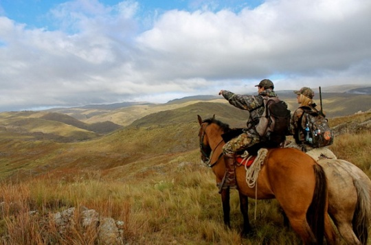 Hunting Tourism Development In Central Asia