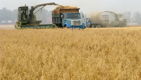 Kazakhstan collects 99.8% of harvest