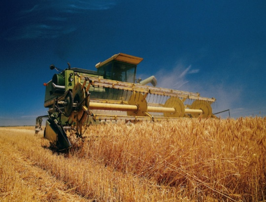 Kazakh agrarians are targeting to harvest more than 20 million tonnes of grain this year