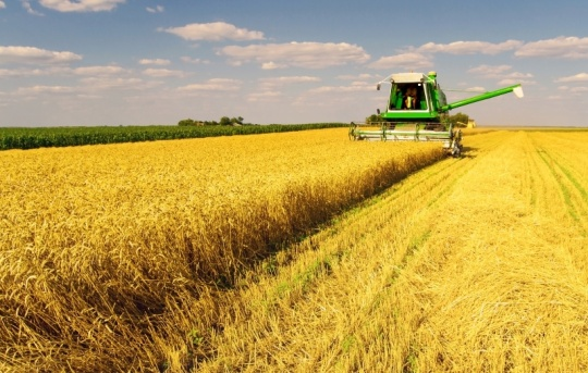 Kazakhstan and China are strengthening cooperation in the agrarian industry