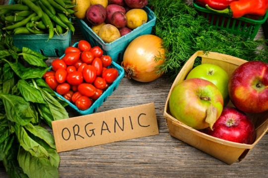 Kazakh organic products are exported abroad, particularly, to the European countries