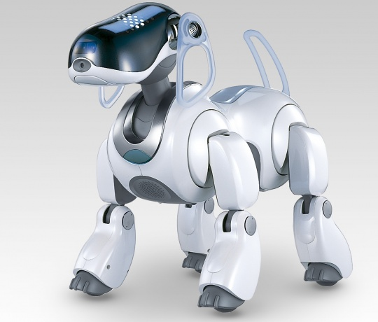 Kyzylorda students created the first robot dog named