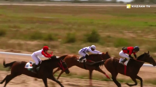 Dichato – the most expensive horse in Central Asia